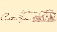 logo_c_pino.png